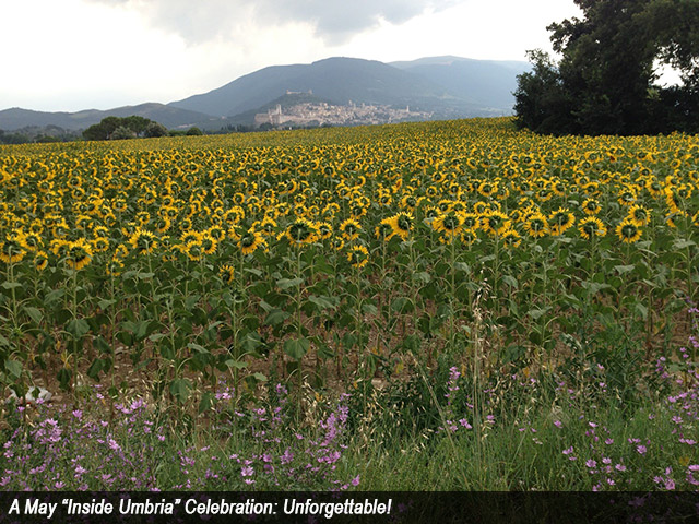 "A May ""Inside Umbria"" Celebration: Unforgettable!"