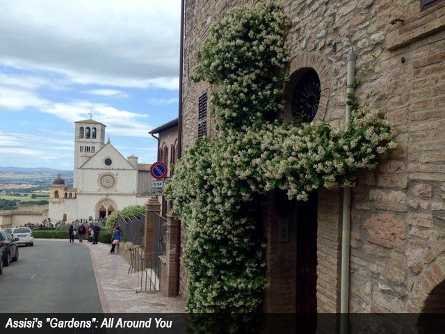 "Assisi's ""Gardens"": All Around You"